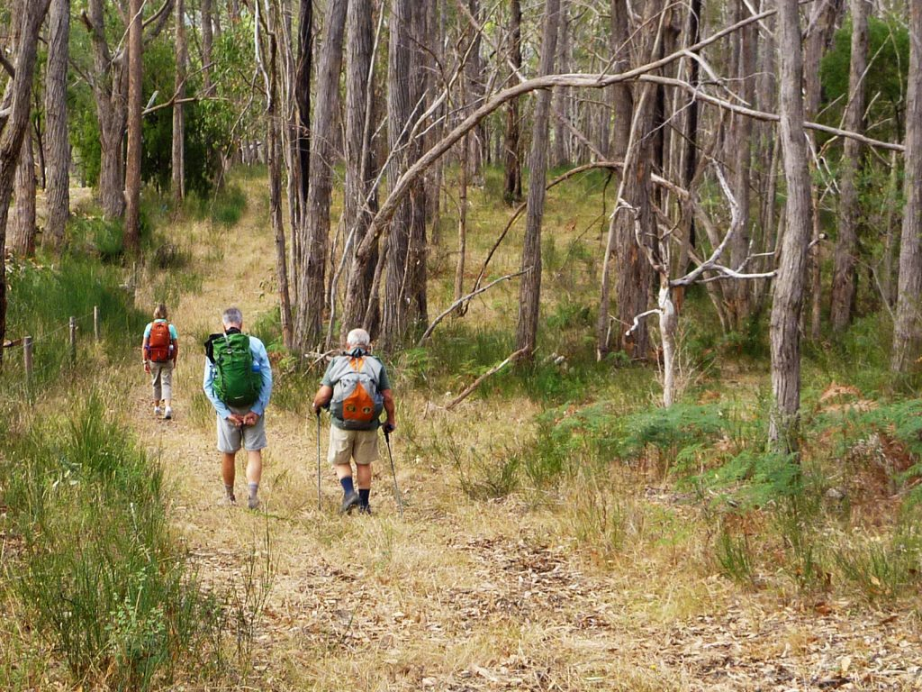 The Adelaide100 trail circumnavigates our city with a diversity of terrain. The hills section follows a variety of unique bush trails through the Adelaide Hills, with majestic views over the city and coast.