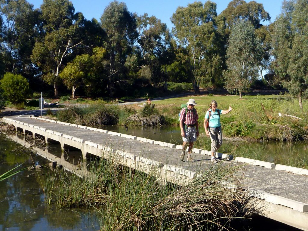 The Adelaide100 trail circumnavigates our city with a diversity of terrain. The river section follows the peaceful green of the River Torrens linear park.
